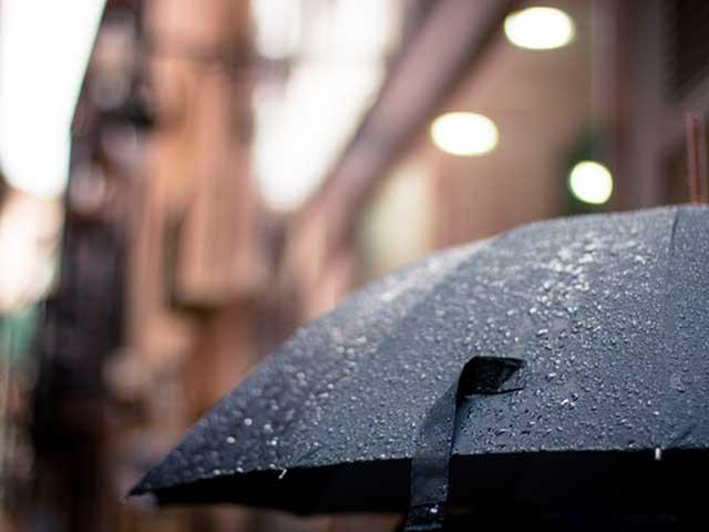 雨の日の傘の画像
