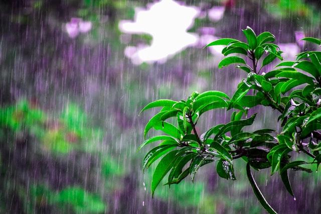 雨の日の販促